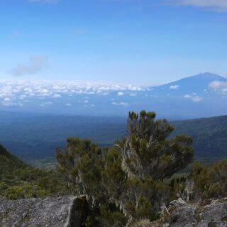 """Bestigningen av Kilimanjaro och safarin efteråt är klart topp tre på min upplevelselista. Jag hade tveklöst roligare än under båda försöken att bestiga Everest. Jag kan lätt rekommendera alla som gillar natur, upplevelser och """"lagomäventyr"""" att göra den kombon. Kilimanjaro bestiger man genom vandring förutom ett litet parti scrambling om man går Machamerutten som är den vanligaste. Med scrambling avses att man måste använda händerna och klättra lite lätt, men det är bara för att ta sig uppför en liten bergvägg dag3. För all del så den som har extrem höjdrädsla ska inte titta ner, men tar man det bara lugnt och fokuserar på uppgiften så går det bra.   Däremot stör jag mig något extremt på alla som säger att det är lätt jogg upp till toppen bara. Det dör bara i snitt 10 personer/året på Kilimanjaro, däremot är mörkertalet stort över hur många som släpas/bärs ner med höjdsjuka. Många har anlitat oseriösa arrangörer som bara är ute efter pengarna och släpar ner turister som kräkt ner sig själva och är halvt medvetslösa. Utan acklimatisering för nästan 6000 meter, så åker man på AMS (altitude mountain sickness) som kan medföra HAPE/HACE (enkelt förklarat drunknar du i dina lungor, eller får en hjärna som sväller så mycket att du får årets hjärnblödning och dör om man inte tar sig ner i tid). Är man bara långsam på berget - som man ska vara - och acklimatiserar sig, så går det bra. Man bör dock ha så pass bra kondition att man inte flåsar för minsta lilla, för gör man det så kan man nog räkna med höjdsjuka redan vid 3500m.  Start i regnskog, sedan grönskande berg, sedan ovanför trädgräsen stenformationer och växter jag aldrig sett innan och till sist sten och glaciär (det som nu är kvar av glaciären). Soluppgången uppe på toppen med molnen kommer jag sent glömma.  Safarin efteråt blev en positiv överraskning! Jag måste bara tillbaka till Afrika för äventyr. Nästa år eller året därpå, siktar jag på att åka ner och bestiga Mount Kenya, Afrikas näst högsta berg och gärna med"""