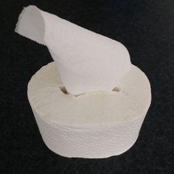 Toalettpapper – tricket för friluftsliv